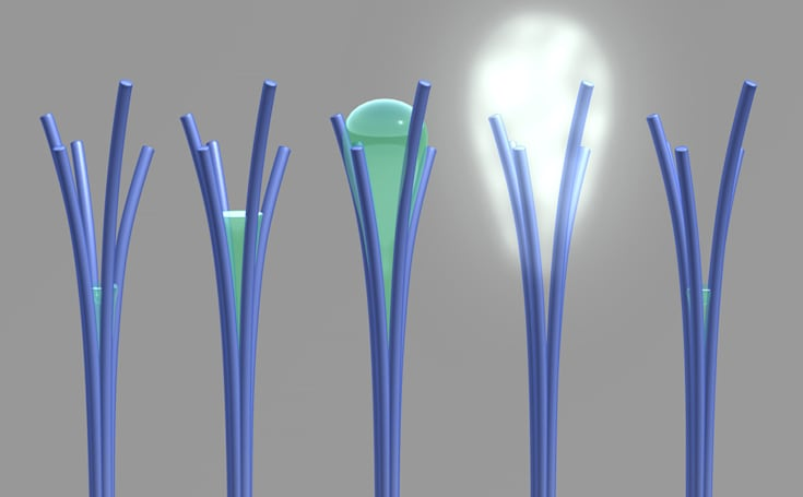 Nanorods could harvest water in dry climates