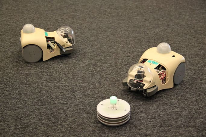 Scientists are studying evolutionary concepts with robot mice