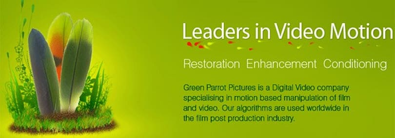 Google buys Green Parrot Pictures, looking to make YouTube vids easier on the eye