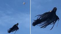 Drohnen-Hack: Todesengel als Nachbarschreck