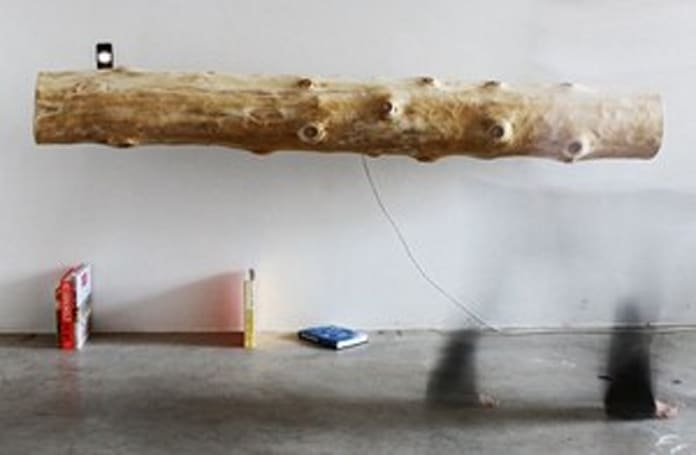 iPod speaker dock carved from tree trunk