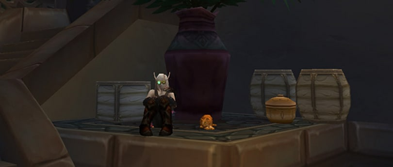 Blizzard update on missing mounts, pets
