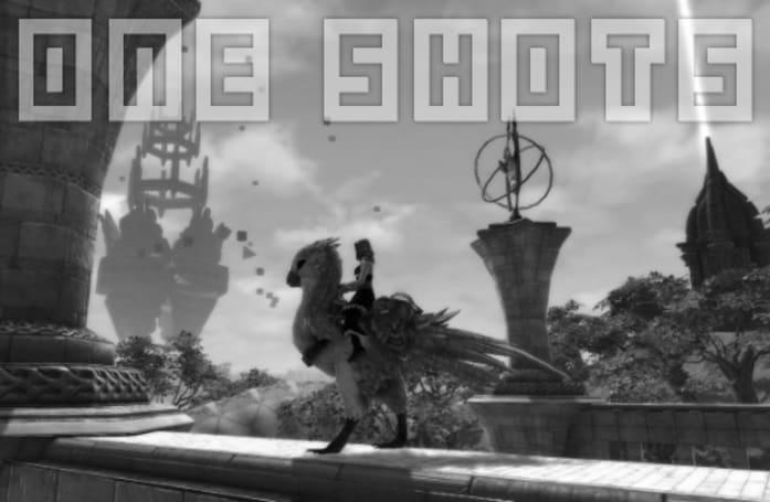 One Shots: Avian servitude