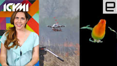 ICYMI: Fire-starting drone, Stanford bird studies and more