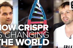 How CRISPR is changing the world