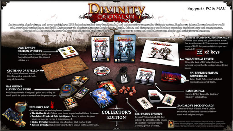 Take a peek at Divinity: Original Sin Collector's Edition