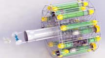 Autonomer Killerbot soll Feuerfische aus dem Atlantik tasern