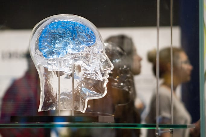 Researcher proposes method for growing brain cells in 3D
