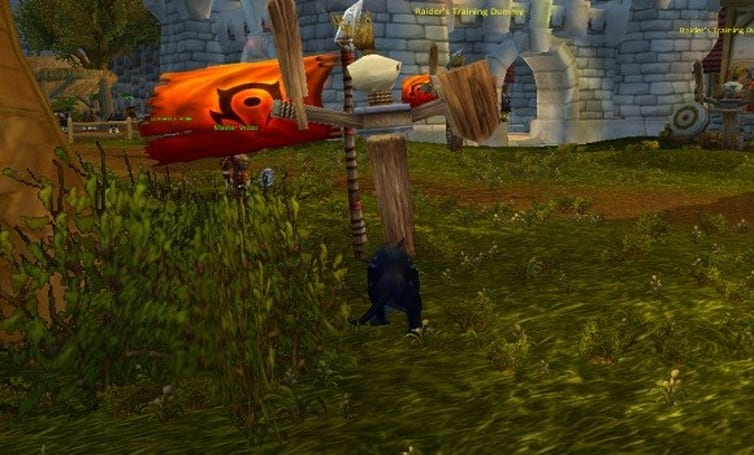 Shifting Perspectives: Mists of Pandaria feral druid 101 guide