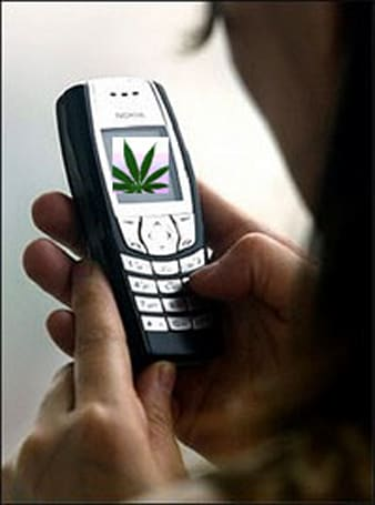 Teacher learns a lesson: don't SMS for pot