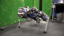 Für mehr Liegestütze: Roboter trinkt Wasser und schwitzt