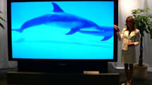 "JVC busts out ""world's largest"" RPTV at 110-inches"