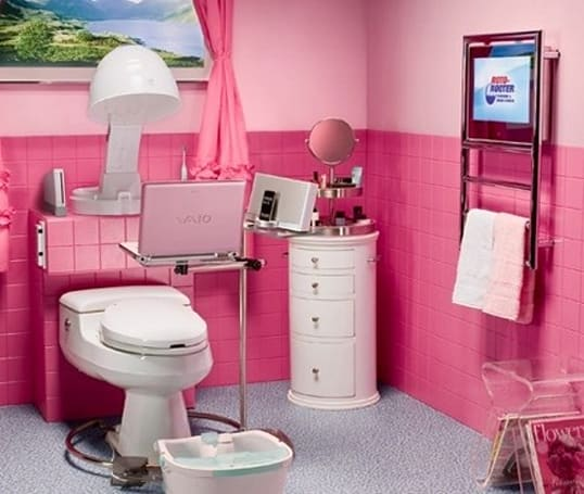 """Roto-Rooter's """"Pimped out Powder Room"""" sports a Wii, needs a bigger TV"""