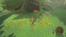 Gameplay-Video: The Legend of Zelda: Breath of the Wild