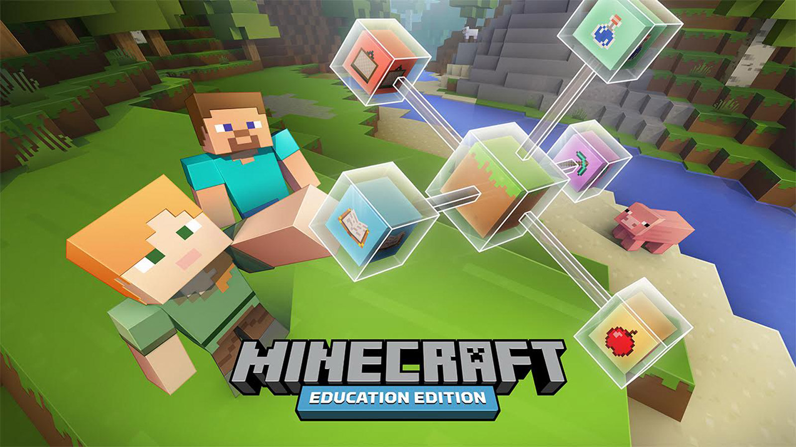 Image result for Minecraft expert