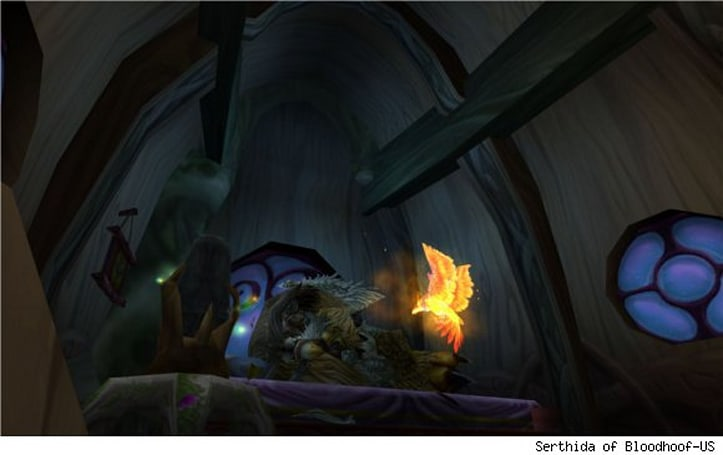 Shifting Perspectives: Soloing as a balance druid