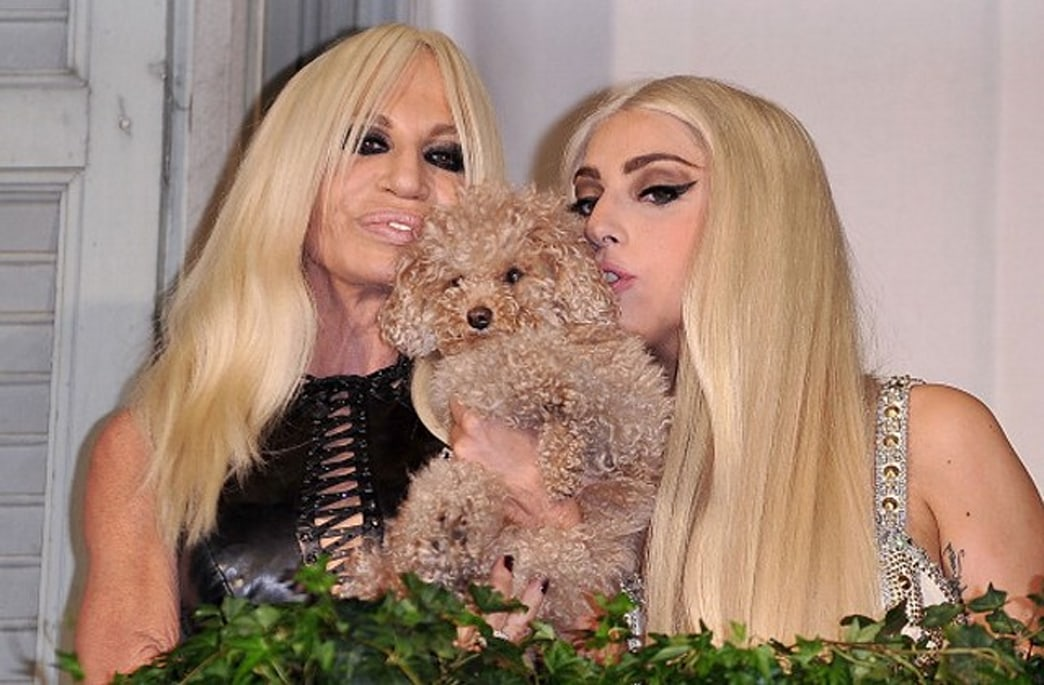 Lady Gaga is reportedly the new face of Versace