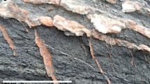 Mars' veins were created by vanishing ancient lakes