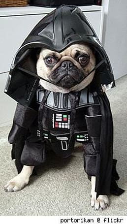 The ins and outs of PuGs