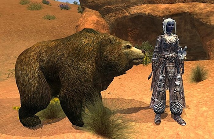 The Daily Grind: What's your favorite MMO pet class?