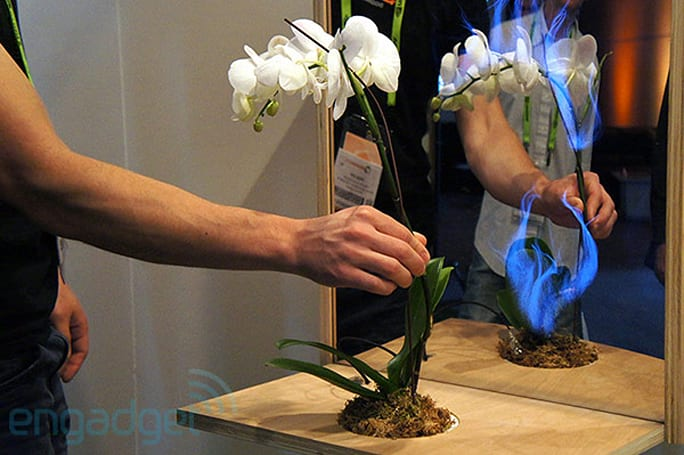 Disney Research's Botanicus Interacticus adds capacitive touch to ordinary plants, we go hands-on