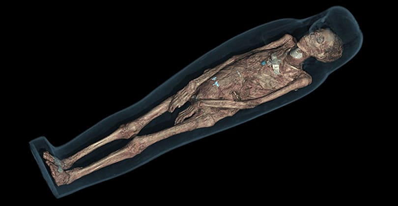 Museum teams up with Samsung to render mummies in 3D (video)