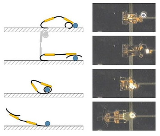 Micromuscle makes microrobots that can live inside you