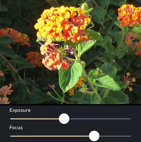 MultiCam for iOS can greatly improve your photos