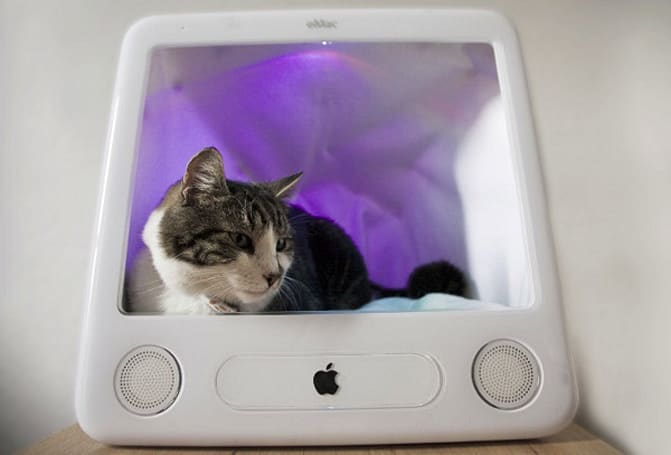 eSleeper combines cats, Arduino and Twitter in an eMac shell (video)