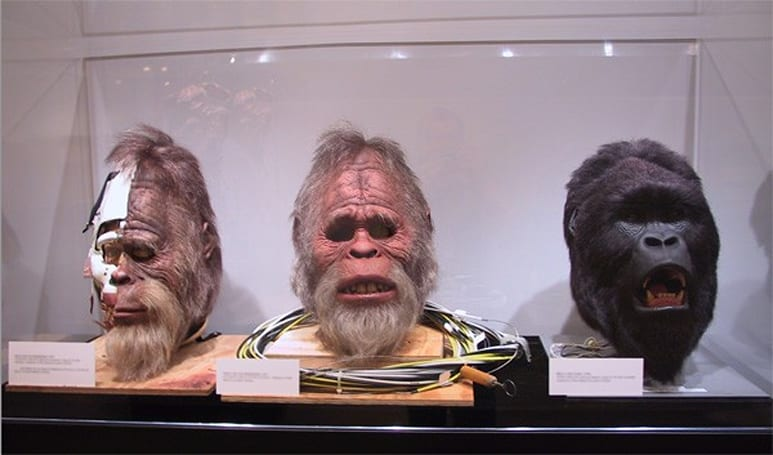 Oxford makes big push into Bigfoot research, enlists Swiss zoologists for DNA study