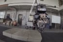 Oregon State's robo-ostrich blindly clambers over obstacles