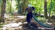 Video: Boston Dynamics führt Humanoiden im Wald spazieren