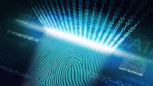 Humans have unique brain 'fingerprints,' scientists confirm