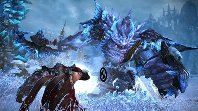Experience TERA with a free high-level character