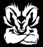2013 Ram 1500 Black Express Is Midnight In The Garden Of