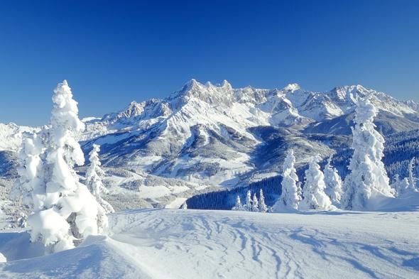 British-school-children-skiers-bus-police-chase-austria