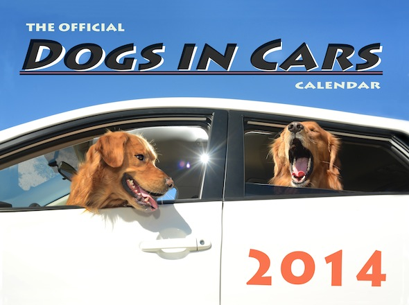 ***EXCLUSIVE***  LOS ANGELES, CA - UNDATED: The front over of the Dogs In Cars 2014 calendar in Los Angeles, California.  A WACKY photographer has come up with an unusual pet project - snapping ecstatic dogs as they hang their heads out of car windows. Lara Jo Regan, 48, embarked on the odd task for her new 2014 calendar 'Dogs In Cars'. The unusual shoot, which took place in Los Angeles, California, aimed to explore the joy experienced by pugs and huskies when a breeze hits their faces.  PHOTOGRAPH BY Lara Jo Regan / Barcroft Media  UK Office, London. T +44 845 370 2233 W www.barcroftmedia.com  USA Office, New York City. T +1 212 796 2458 W www.barcroftusa.com  Indian Office, Delhi. T +91 11 4053 2429 W www.barcroftindia.com