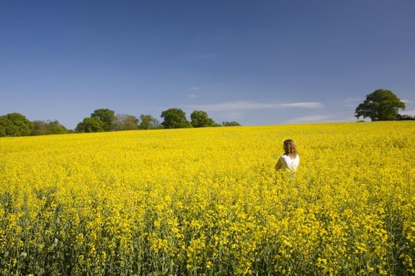 uk-weather-spring-sunshine-18C-temperatures
