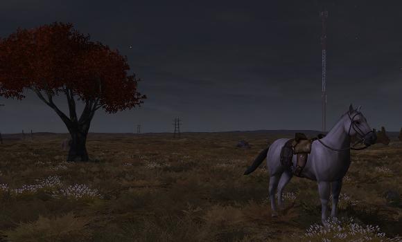 I even built me a horse.