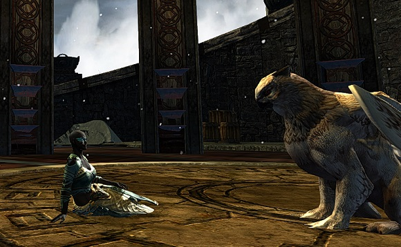 Making friends with griffons is very important.