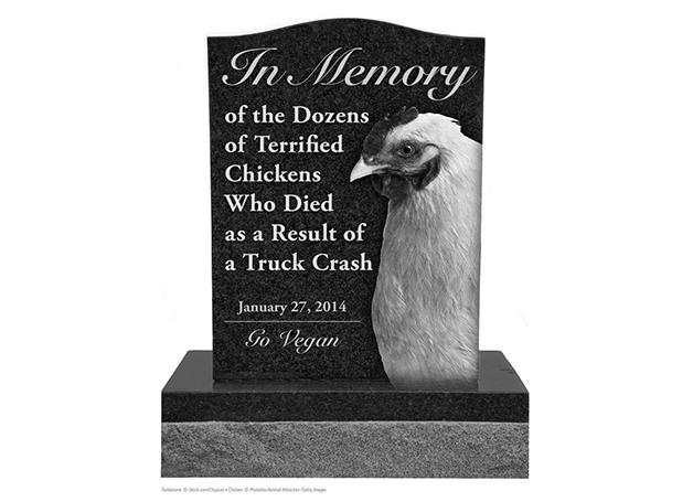 【レポート】「死んだニワトリの記念碑を建てたい」 動物愛護団体の申請が話題に