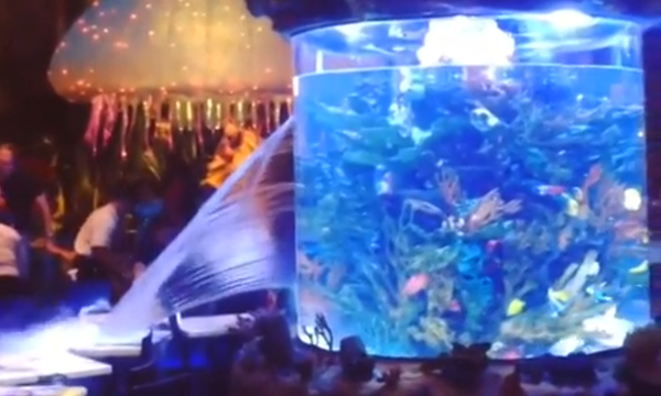 Fish tank burst video from Disney World's Downtown Disney's T-Rex Cafe