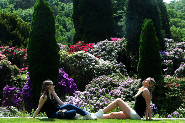 Philippa Christie, 22, from South Shields (right) and friend Alex Hughes, 21, from Hartlepool enjoy the sun in the Rhododendron garden at Belsay Hall in Northumberland as the UK may bask in the hottest day of the year so far today, forecasters said.