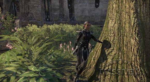Elder Scrolls Online elf guard