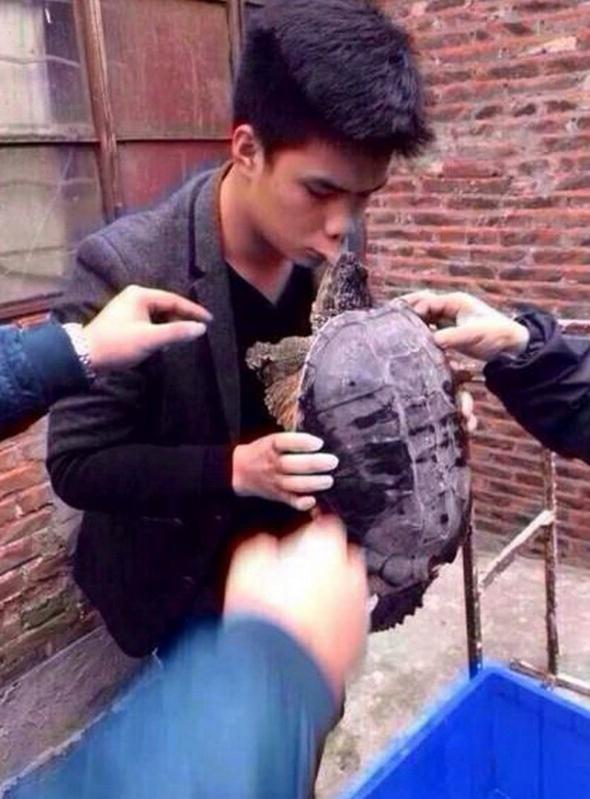 man-bitten-alligator-snapping-turtle