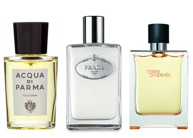 mens-fragrances-for-women