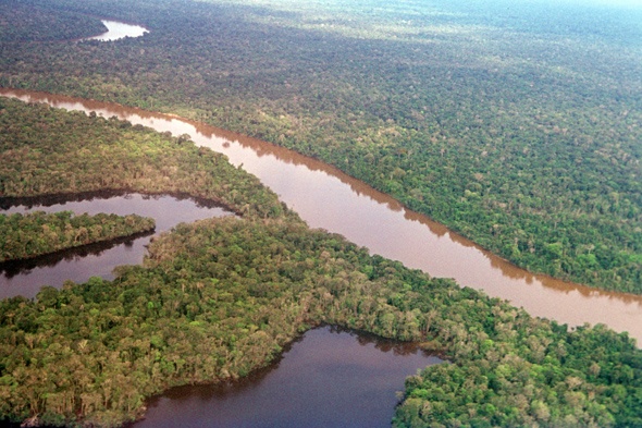 A view on Amazon River near Iquitos in Peru