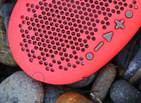 Red Urchin cover
