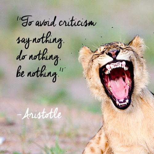 Afbeeldingsresultaat voor criticism quotes images