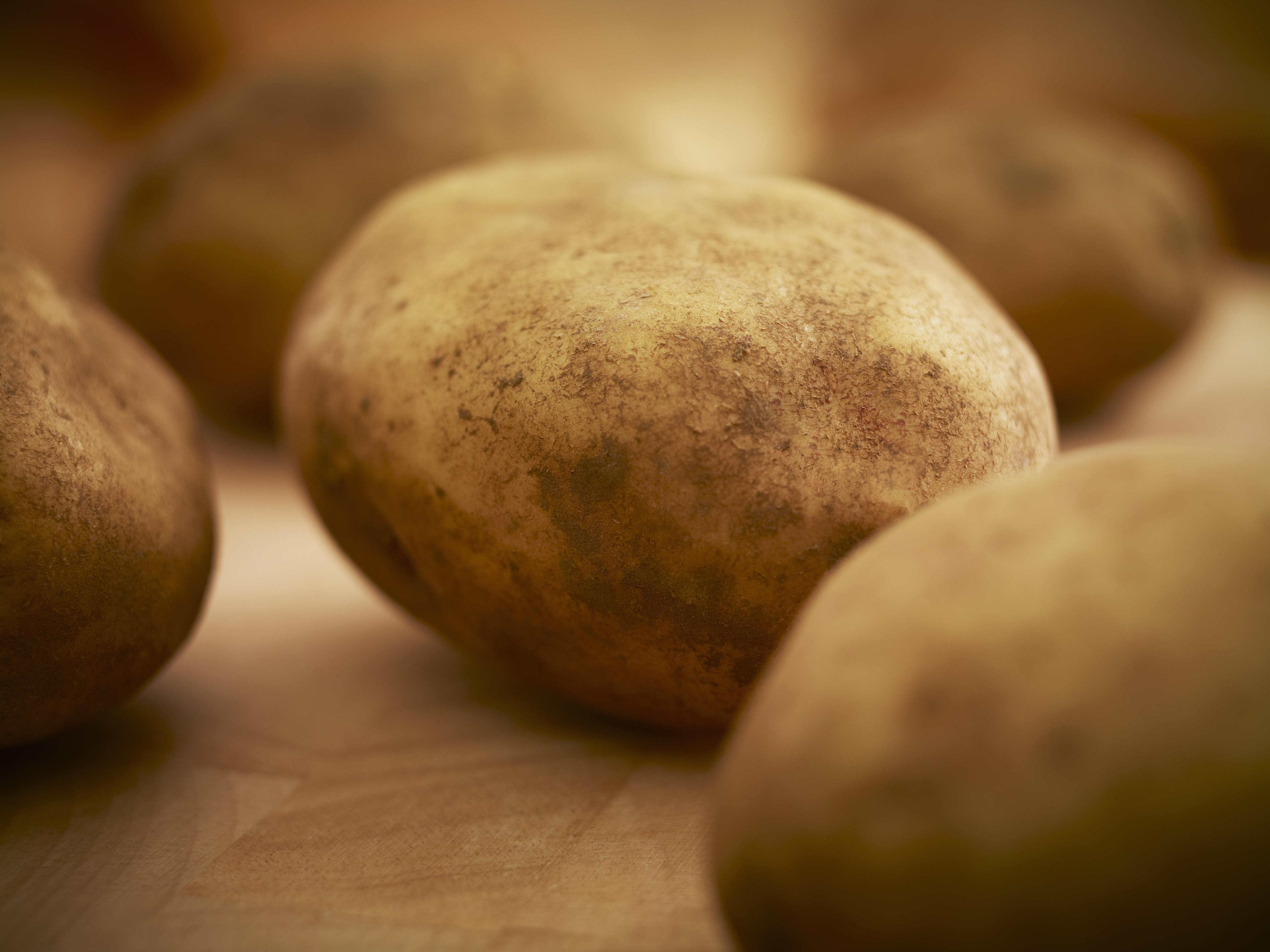 Close up of organic potatoes